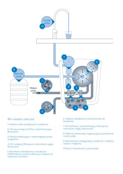 cleone infografika